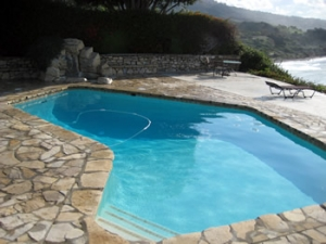 Bay Area Pool Service News